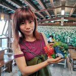 47697981132 84bf7756c2 z 150x150 - 【台北旅遊。台灣】北投《財福海芋田》穿著可愛的「青蛙裝」採花去